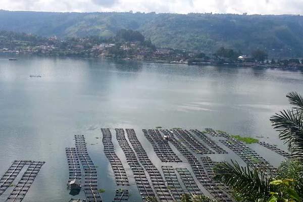Makin Kritis, Restorasi Danau Toba jadi Prioritas, Seperti Apa?