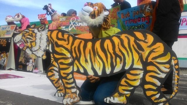"""Aksi """"BURU PEMBURU HARIMAU"""", Dalam Rangka Memperingati Hari Harimau Sedunia (Tiger Global Day )"""