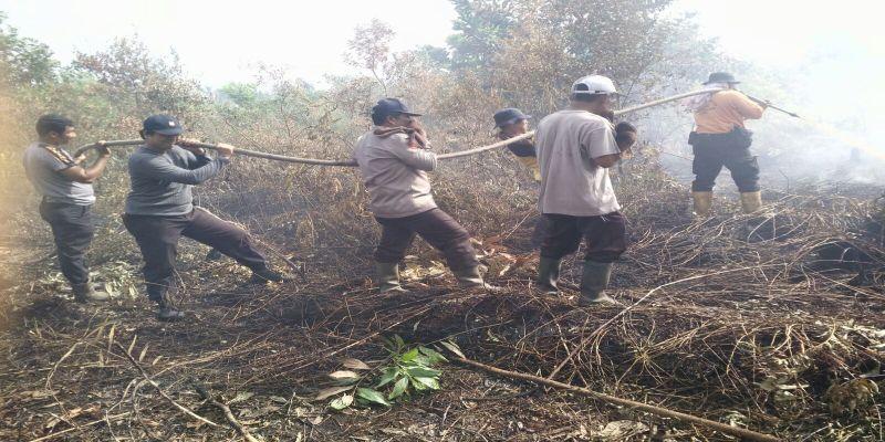 Kebakaran Hutan, 2 Ton Garam Kembali Ditebar di Langit Riau