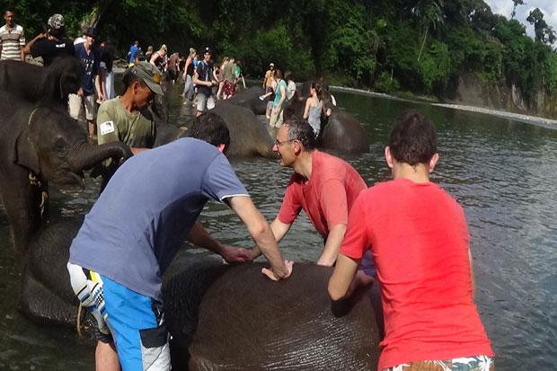 Ekowisata. Memandikan Gajah Di CRU Tangkahan Taman Nasional Gunung Leuser