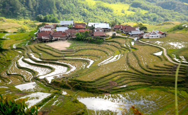Mongabay Travel : Petualangan Menuju Seko