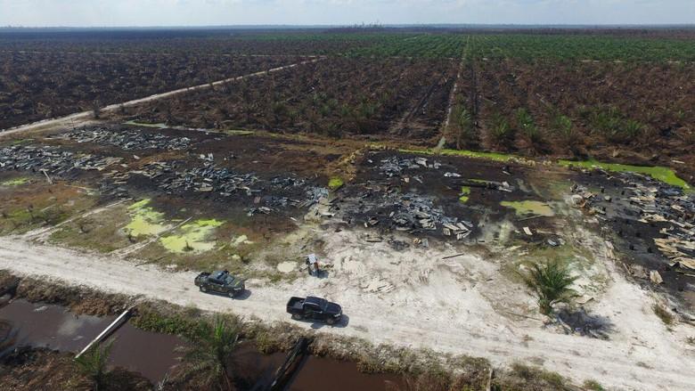 Beberapa Sisa Hasil Foto Drone KLHK Bukti Kebakaran Hutan di Riau, Sisanya Dirampas Penyandera