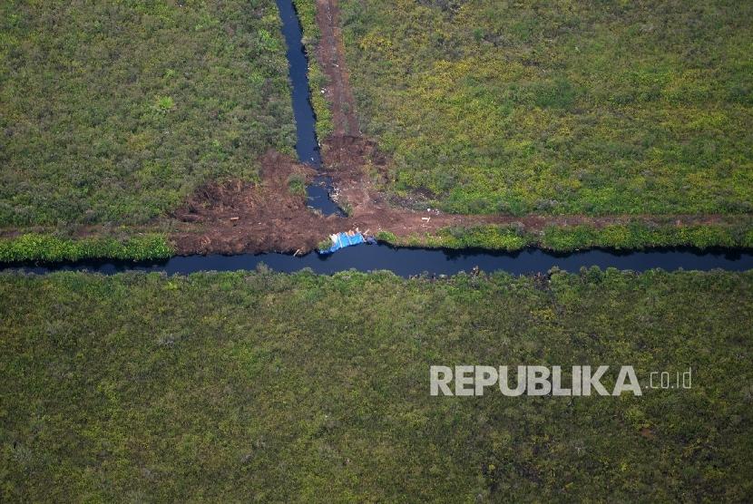 Kanal-kanal yang ditutup pada Operasi Gabungan Pemulihan Keamanan di Cagar Biosfer Giam Siak Kecil, Bengkalis Riau, Selasa (25/10).(Republika/Wihdan Hidayat) (FOTO : Republika/Wihdan Hidayat)