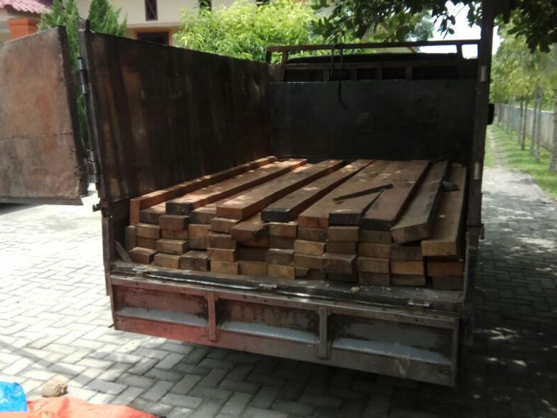 3 Pelaku Illegal Logging Ditangkap di Kawasan Konservasi