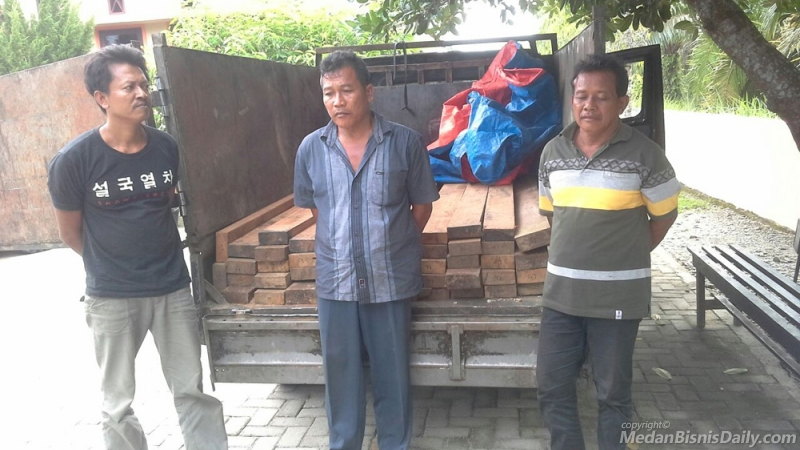 Tiga Pelaku Ilegal Logging di TNGL Ditangkap