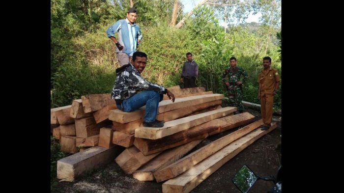 Polisi Tangkap Truk Kayu Ilegal