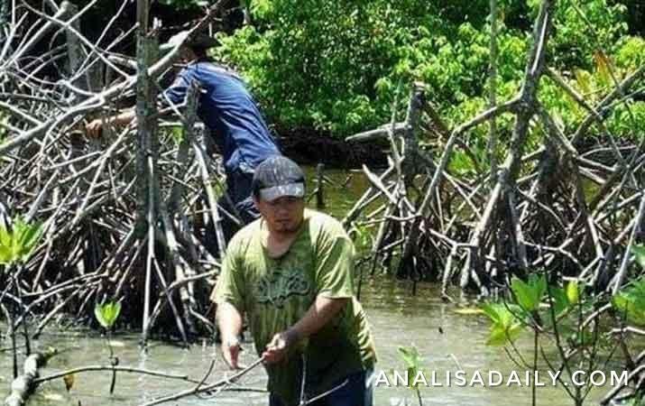 Konsisten Lestarikan Hutan Mangrove, Wibi Juara Konservasi Alam