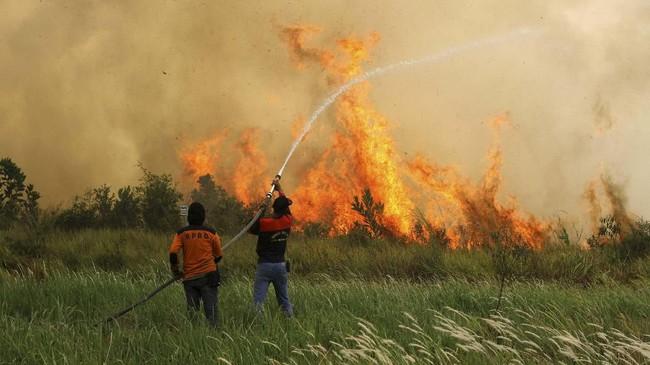 FOTO: Tercekik Kabut Asap di Sumatera dan Kalimantan