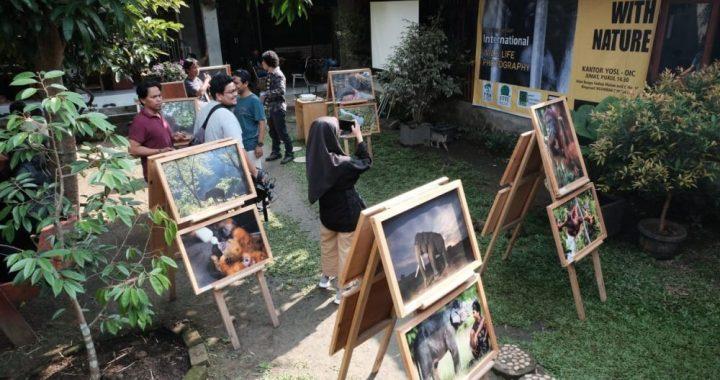 Pewarta Foto Sangat Dibutuhkan Dorong Kepedulian Lingkungan