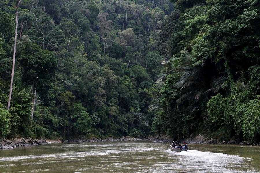 Sungai Alas-Singkil berhulu di Kabupaten Gayo Lues dan bermuara ke Samudera Hindia. Foto: Junaidi Hanafiah/Mongabay Indonesia