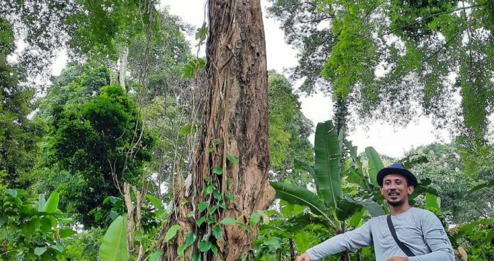 Usai Degradasi, Terbitlah Hutan Belajar Desa