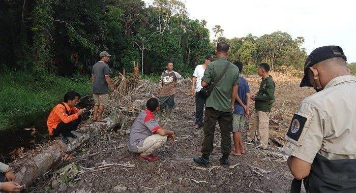 BKSDA Sumsel Turun Tangani Gajah Liar Teror Warga Muratara, Gajah Mengarah ke Ibukota Kabupaten