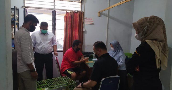 Pelaku Perdagangan Satwa Kukang Terancam Hukuman 5 Tahun Penjara