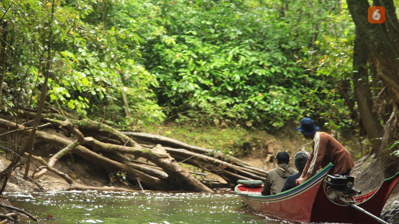 Akses menuju hutan desa di Desa Genting Tanah, Kabupaten Kutai Kartanegara. (foto: Abdul Jalil)