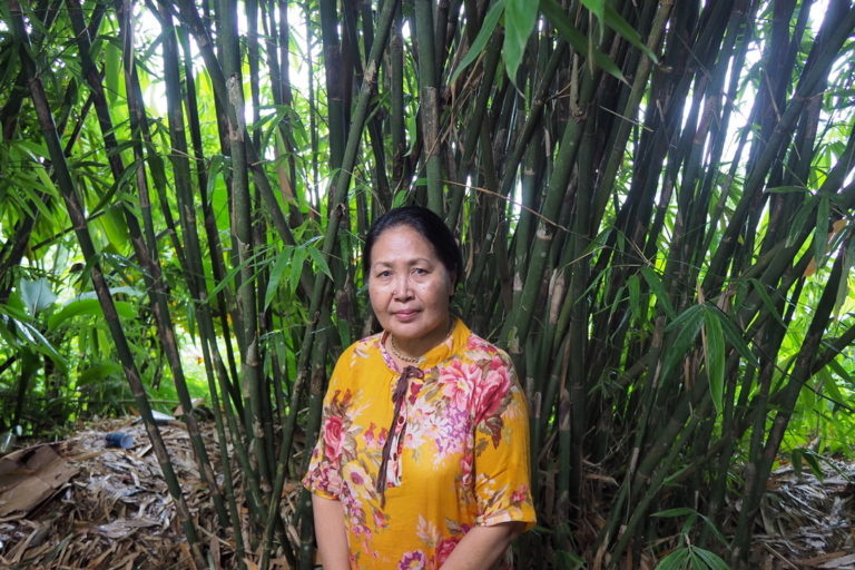 Peneliti bambu PK Diah Kencana di depan rumpun bambu tabah di Pupuan, Tabanan, Bali, tempat penelitiannya selama 20 tahun terakhir. Foto Anton Muhajir/Mongabay Indonesia