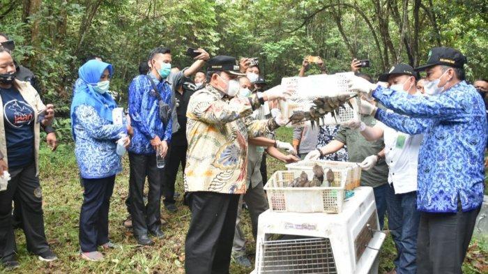 Wakil Bupati Lampung Timur Azwar Hadi melakukan pelepasan satwa liar di Taman Nasional Way Kambas (TNWK), Kecamatan Labuhan Ratu, Kamis (17/6/2021). Dokumentasi Pemkab Lampung Timur