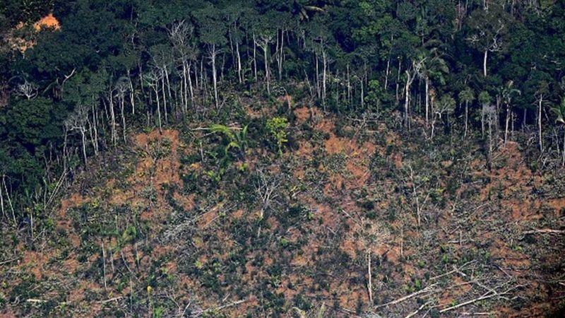 Keterangan gambar, Para ahli khawatir tentang peningkatan deforestasi menjelang musim kemarau. GETTY IMAGES
