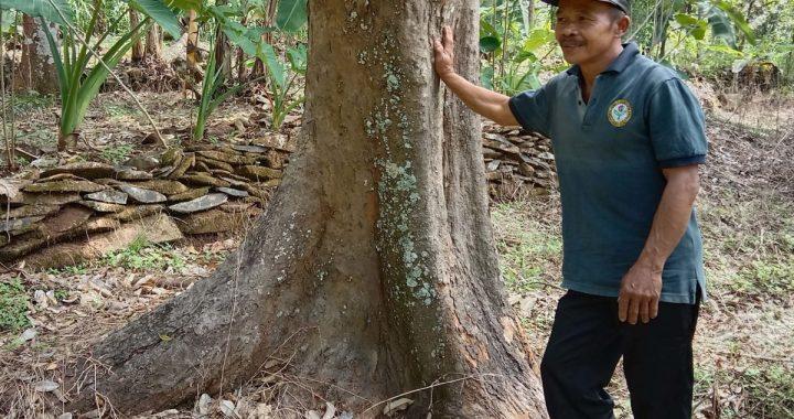 Imbal Jasa Lingkungan bagi Petani di Kaki Gunung Bromo, Seperti Apa?