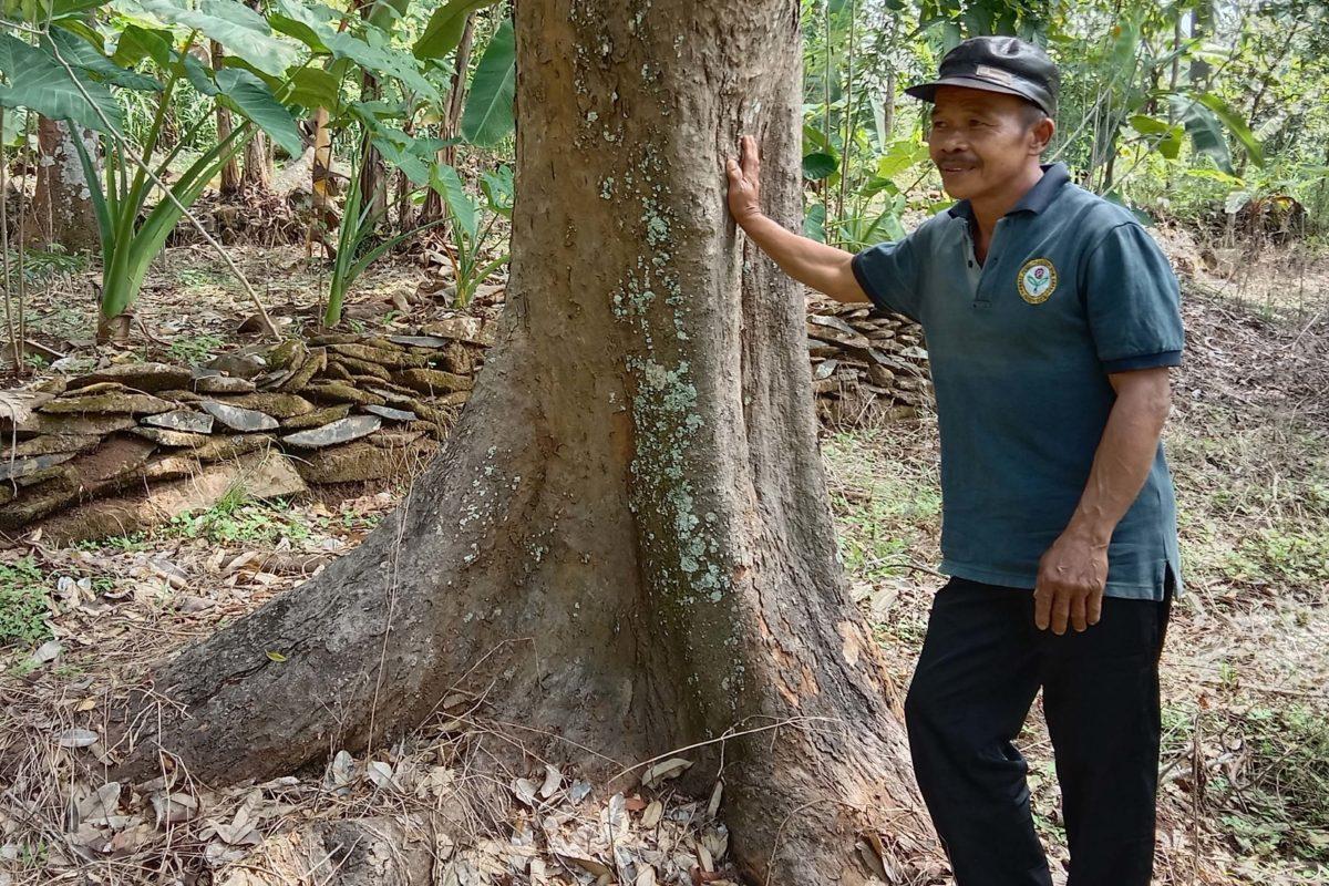 Supono, ketua kelompok tani Sumber Rejeki di Desa Galih, Kecamatan Pasrepan, Kabupaten Pasuruan. Foto: A. Asnawi/ Mongabay Indonesia