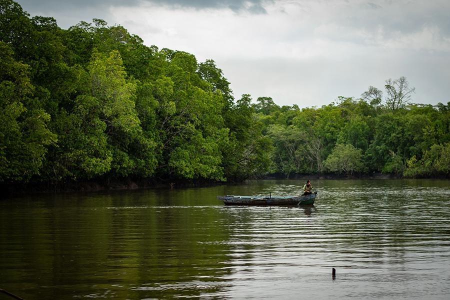 Seorang nelayan tengah mendayung perahu, melintasi hutan mangrove di Sungai Mendo, Desa Labuh Air Pandan, Kabupaten Bangka Barat, Bangka Belitung. Foto: Nopri Ismi Mongabay Indonesia