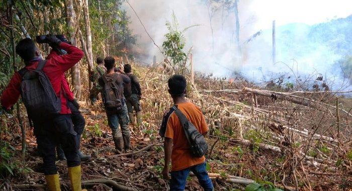 Taman Nasional dan Hutan Lindung di Riau Terbakar, 3 Orang Diamankan