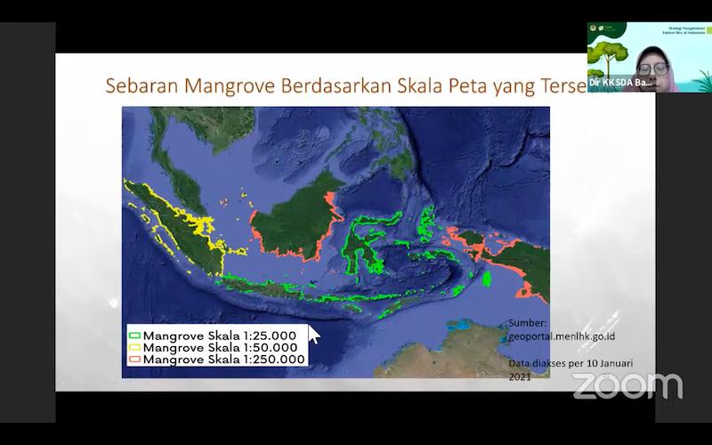 Sebaran kawasan mangrove di Indonesia. Sumber : presentasi Nur Hygiawati Rahayu, KKSDA Kementerian PPN/Bappenas