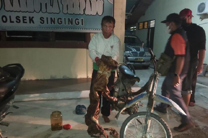 Personel Polsek Singingi di Kabupaten Kuantan Singingi, Riau, menggiring tersangka pemburu liar yang ditangkap bersama barang bukti kulit Harimau Sumatera dan janin rusa, Senin 30 Agustus 2021 ANTARA/HO-KLHK