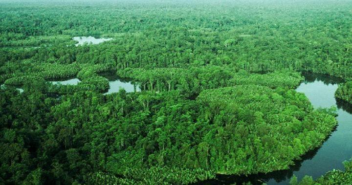 Mengenal Taman Nasional Lorentz dan Kekayaan Alam Papua