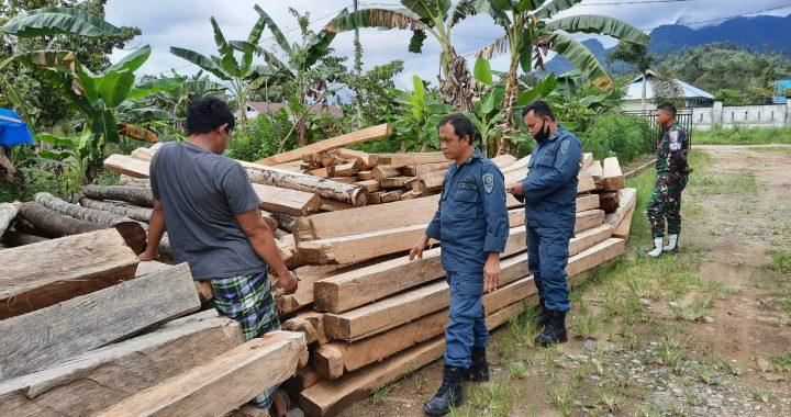 Gakkum KLHK Sulawesi Ungkap Jaringan Peredaran Kayu Ilegal Bermodus Dokumen Palsu