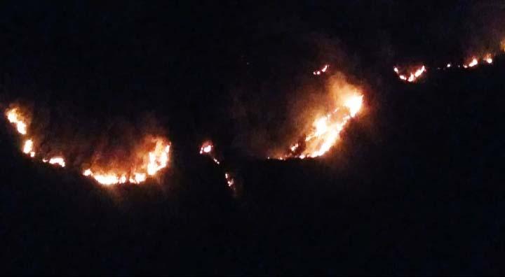 Kobaran api mengular di Taman Nasional Bromo, Tengger, Semeru. Foto: istimewa